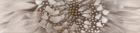Зебрано бежевый Бордюр (К61311) 6х25 25х6 см